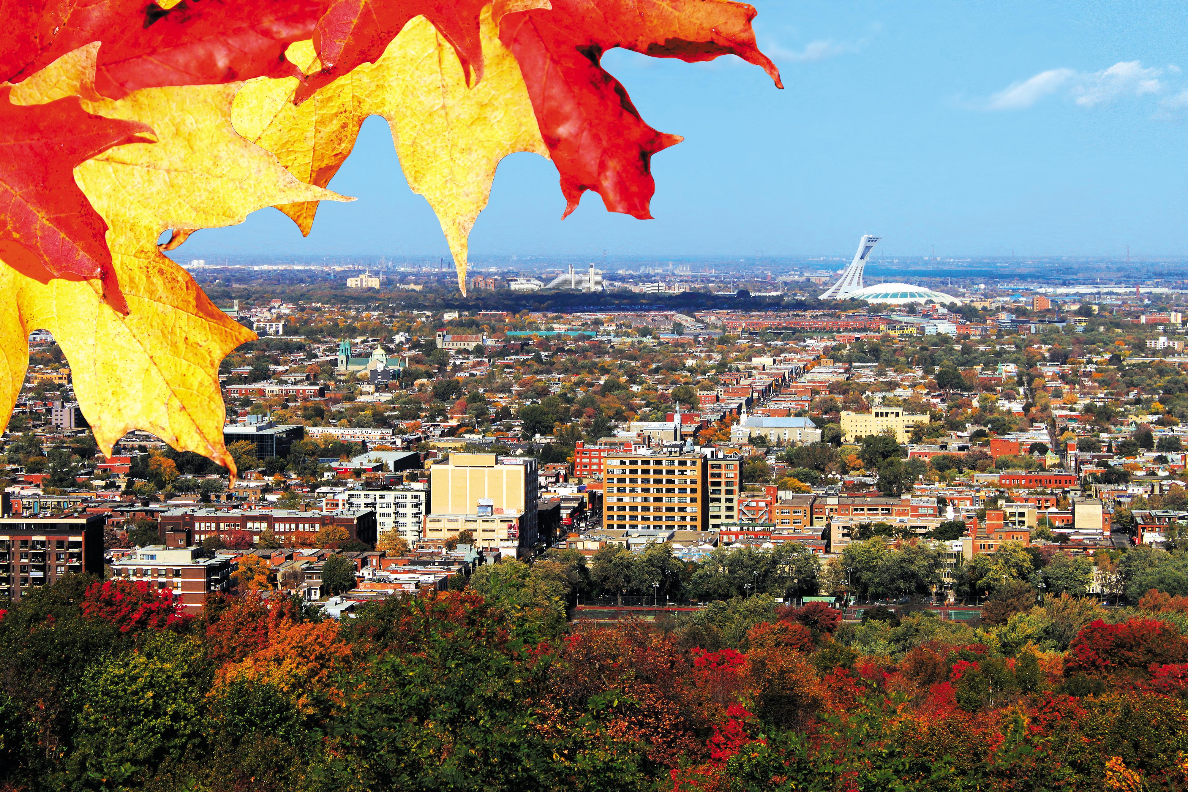 Explosión de colores en Quebec