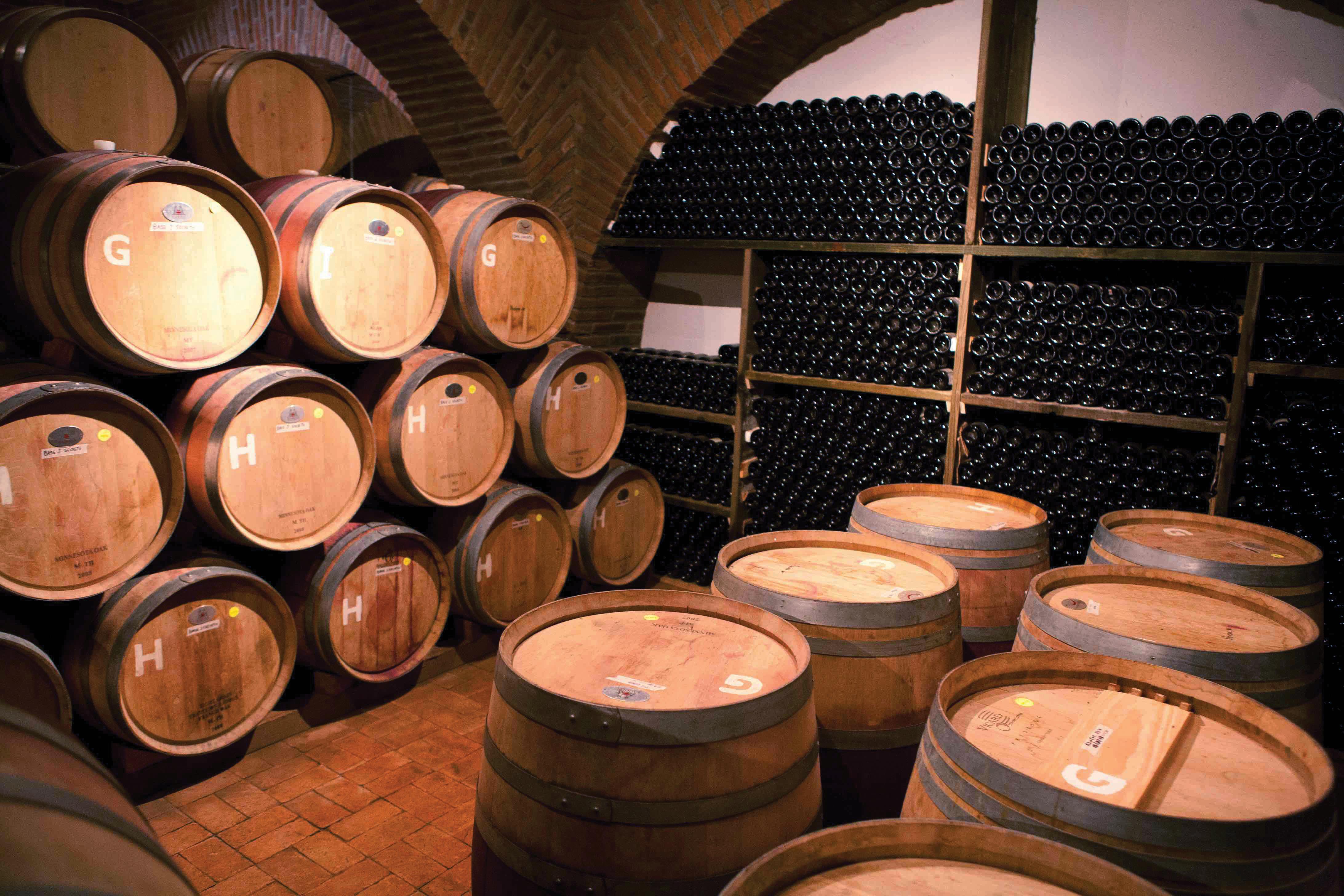 Maridaje Patrio con vinos de Argentina, Chile y España