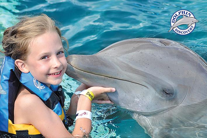 Dolphin Discovery, empresa socialmente responsable