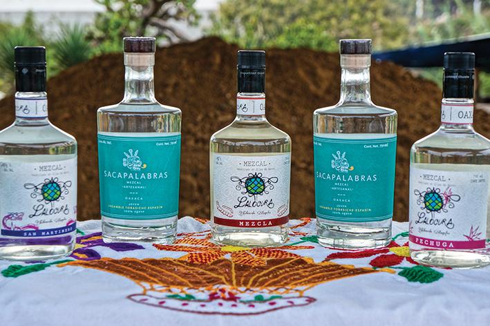 jet news mezcales de Oaxaca1