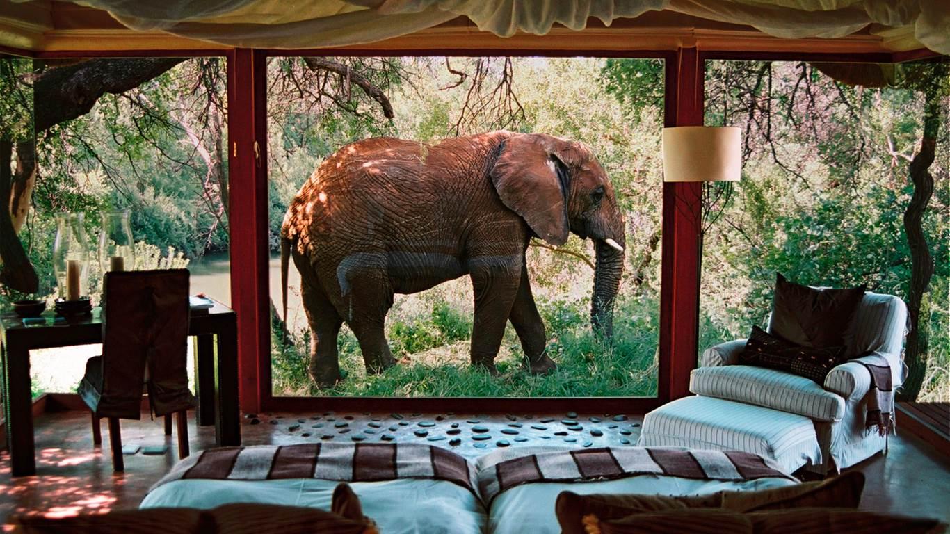 Hoteles al estilo Safari