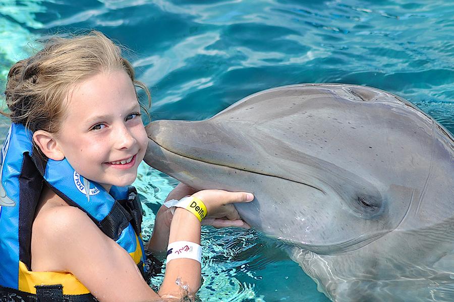 Dolphin Discovery presenta el programa 10 mil sonrisas
