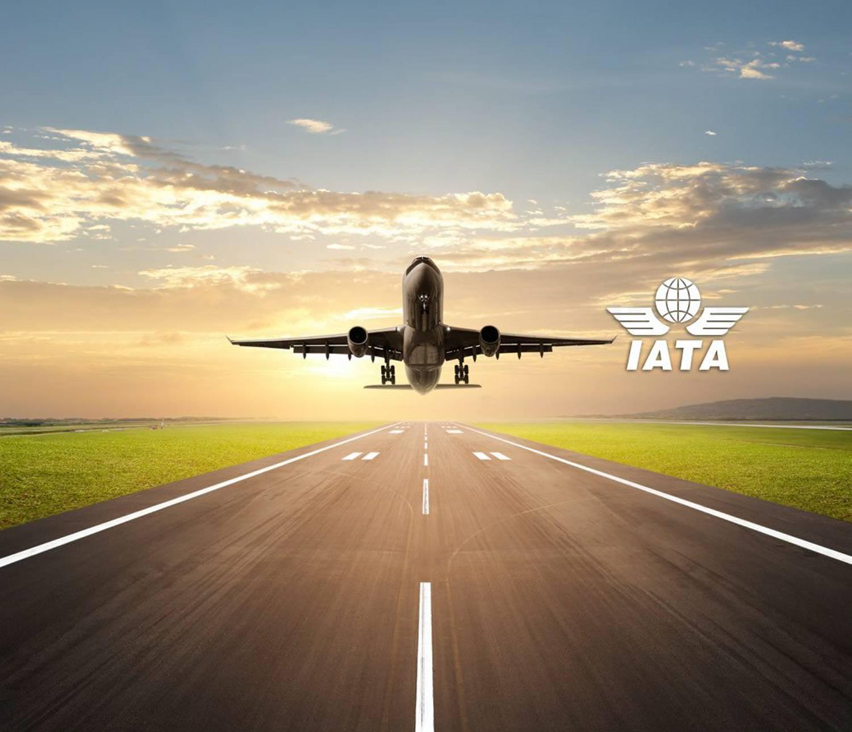 La IATA tiene nuevo presidente