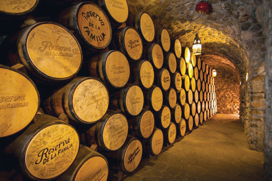 Mundo Cuervo impulsa turismo en Tequila
