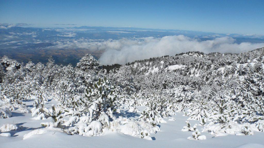 sierra-tarahumara