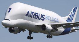 La historia del Beluga