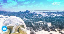 Galápagos paraíso perdido en el tiempo