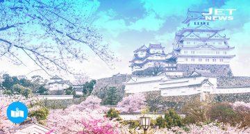 Japón bajo la flor del cerezo