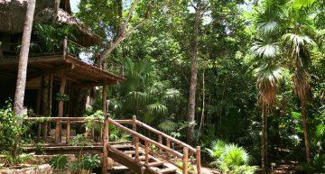 Cupaima, un paraíso en el sureste del país