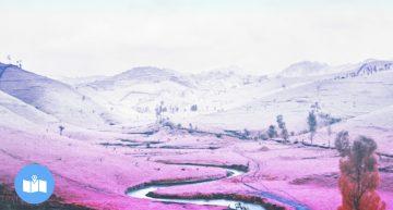 Este es el arte más rosado que verás hoy