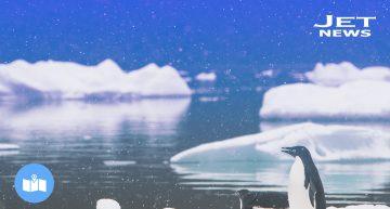 10 Reglas extrañas para viajar en la Antártida