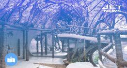 5 hoteles ecológicos en México que son visita obligada